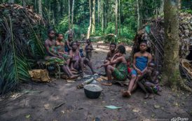 Пигмеи Бака в Камеруне