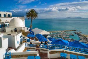 Интересные экскурсии в Тунисе