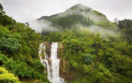 Интересные экскурсии в Шри-Ланке
