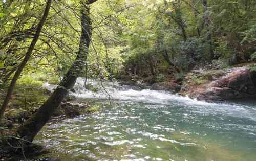 Река Чёрная