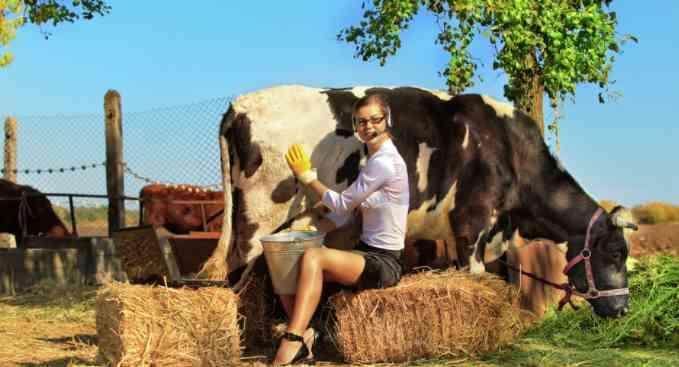 Госдума приняла законопроект о развитии сельского туризма
