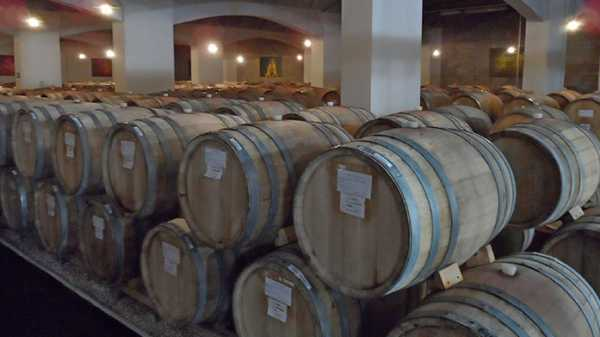 Экскурсия на Туапсинский винзавод с дегустацией
